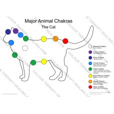 Chakras of the Cat Poster - PDF Download