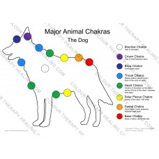 Chakras of the Dog Poster - PDF Download